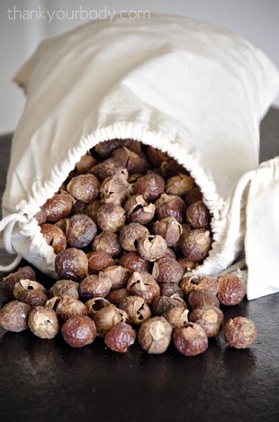soap nuts: all natural laundry made super easy!