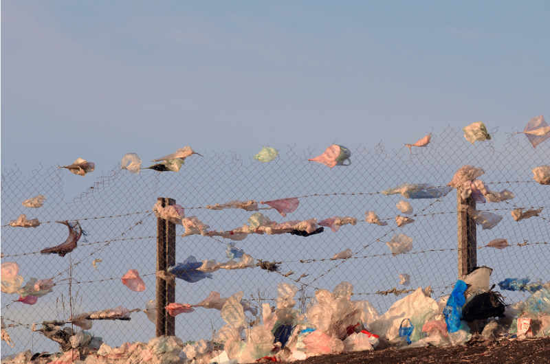 The dangers of plastic bags are real. Be part of the solution (it's really easy!)